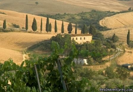 A walk in the countryside - Learn Italian in Tuscany @ Il Sasso