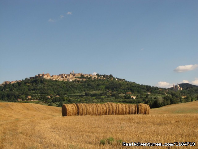 Montepulciano (#22 of 26) - Learn Italian in Tuscany @ Il Sasso
