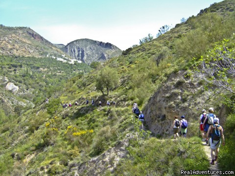 Group Walking In Lower Alpujarras - Guided Walking Tours in Sierra Nevada, Granada