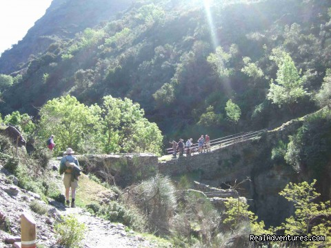 Group on Roman Bridge in la Taha - Guided Walking Tours in Sierra Nevada, Granada