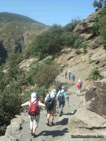 Walking down the Rio Trevelez valley - Guided Walking Tours in Sierra Nevada, Granada