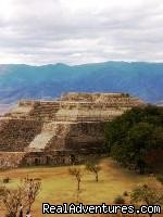 - Yoga and Dance Retreat in Oaxaca Mexico