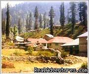 Himachal Tours: