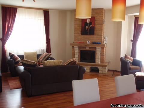 Living with fire place - Villa Casa Olandeza Brasov mountain holiday house