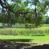 Lake at Fiddler's