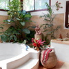 Bathroom garden