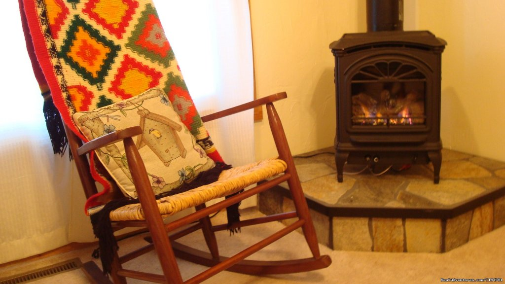 Cozy Up By The Fire In The Living Room | Image #10/24 | Mt Evans Cabin, Hot Springs & Historic Town