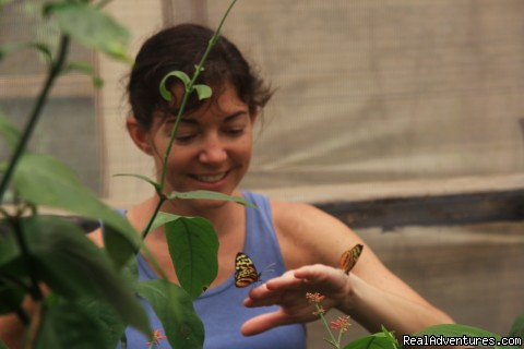 Butterfly Farm - Adventure and Ecotourism At  Finest Amazon Lodge