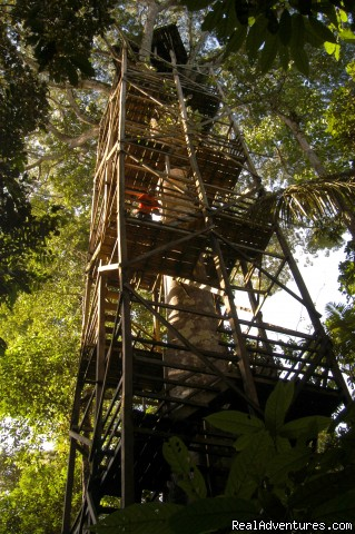 Observation tower - Adventure and Ecotourism At  Finest Amazon Lodge