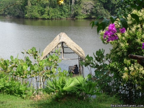 Viewpoint - Adventure and Ecotourism At  Finest Amazon Lodge