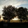 Clone House Farm Guesthouse Ferns Wexford