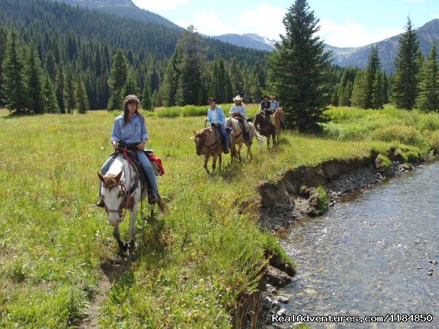 Horseback ride to an alpine meadow - Hawley Mountain Guest Ranch Vacation