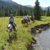 Horseback ride to an alpine meadow