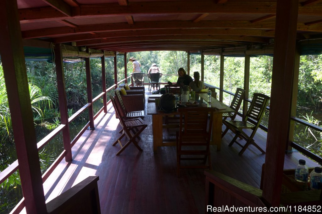 On the deck of the Sekonyer | Image #4/21 | Orangutan River Cruises