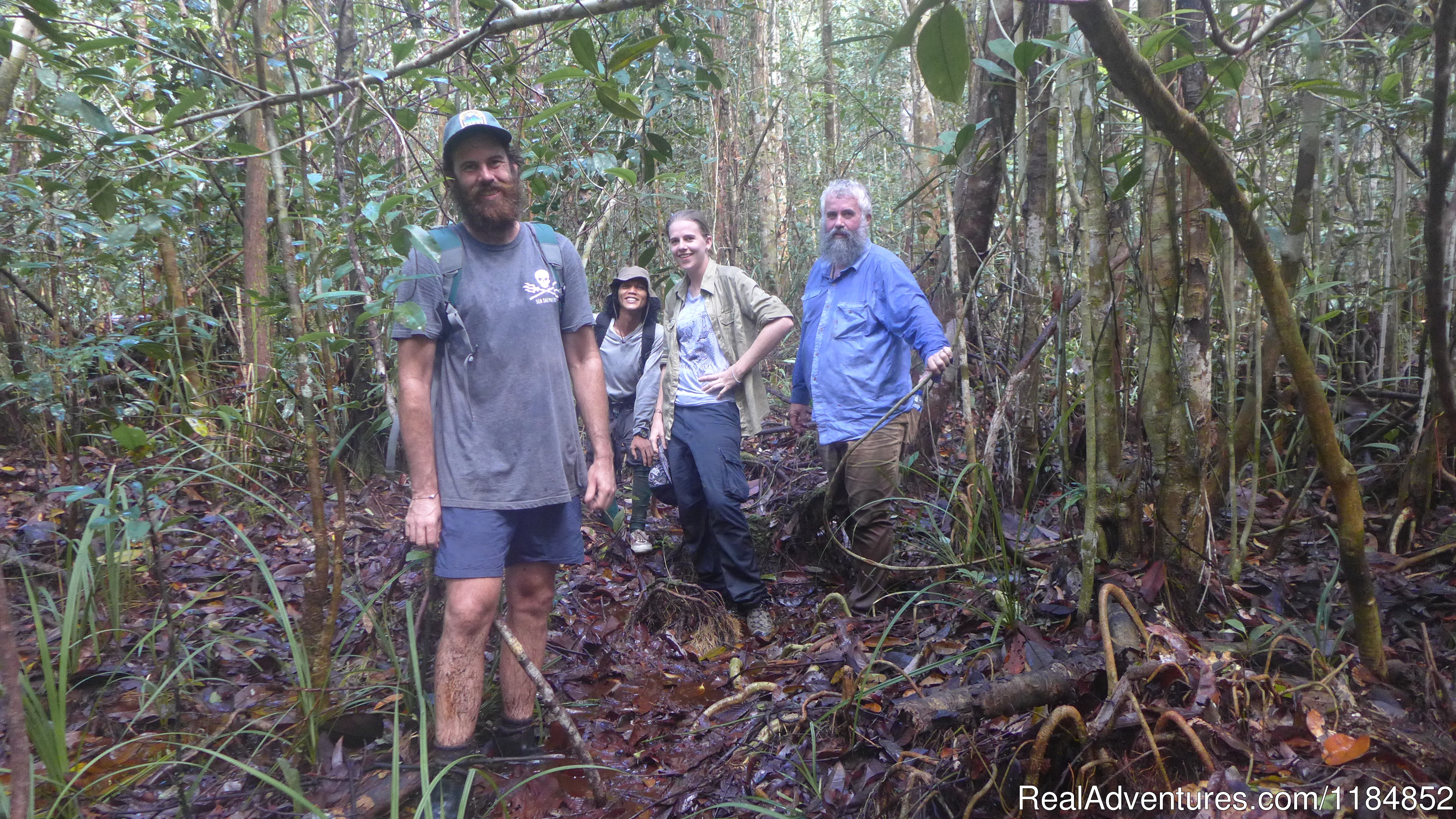 Trekking in the Sebangau National Park wildlife spotting