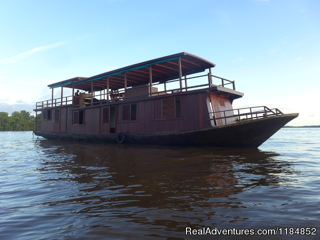 Orangutan River Cruises: The Sekonyer