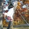 ACTIVE: Climbing Trees