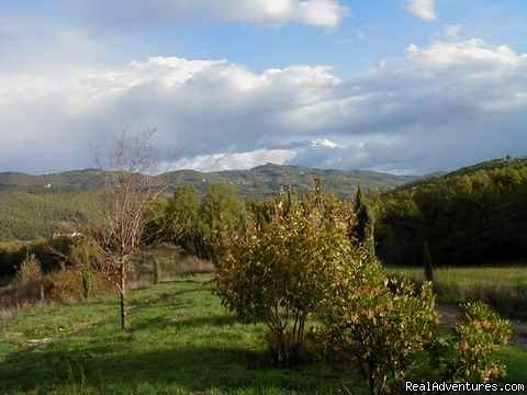 view from the patio, spring | Image #7/15 | Mountain Bike from your front door in Umbria!