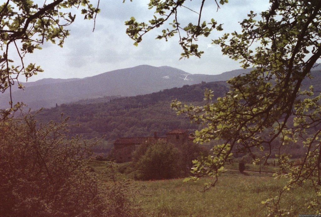 Above the house | Image #12/15 | Mountain Bike from your front door in Umbria!