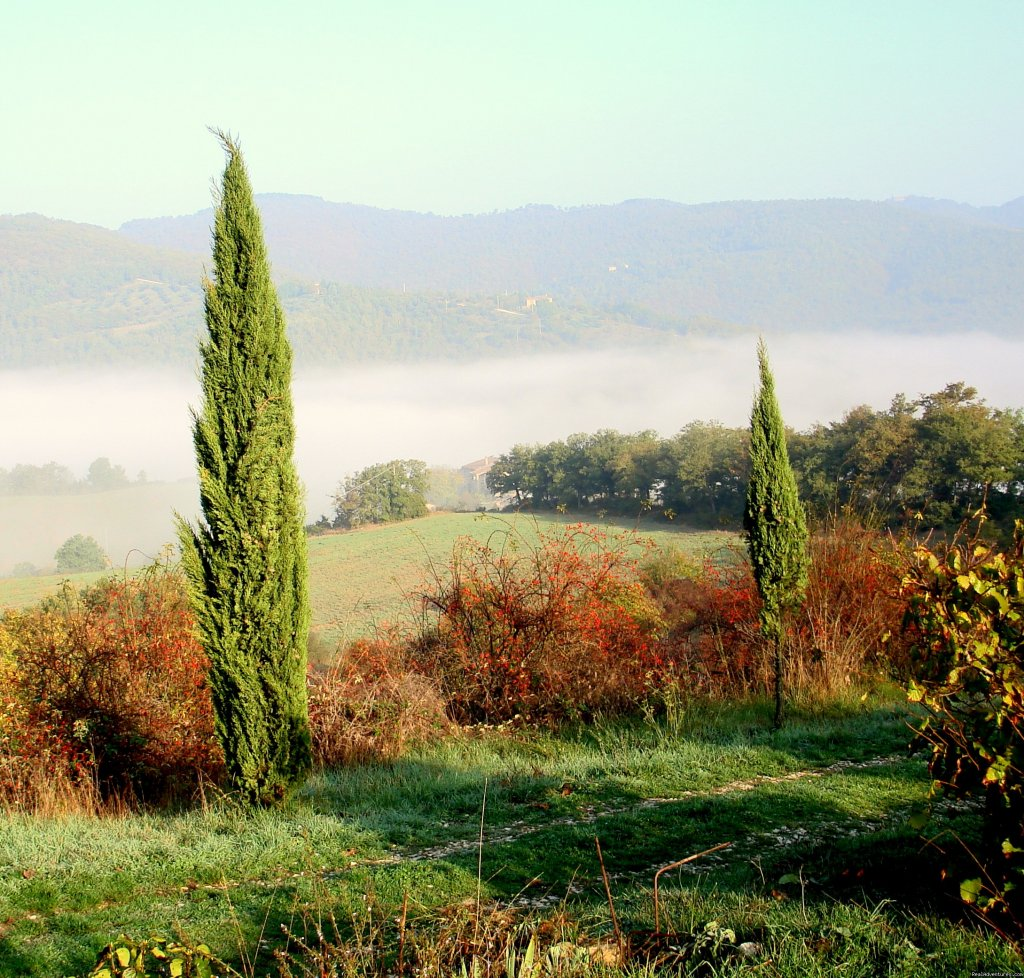 early morning | Image #14/15 | Mountain Bike from your front door in Umbria!