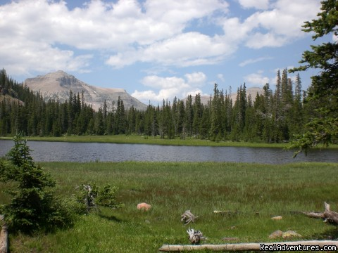 Rock Creek Drainage - High Lake Wilderness Trips and Horseback Riding