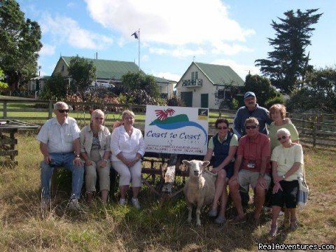 Small personalised groups | Image #3/9 | Auckland (NZ) Sheep World Tour