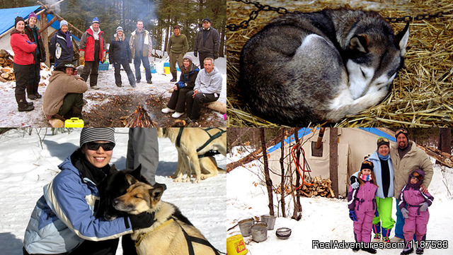 - Algonquin Dog Sled Adventures
