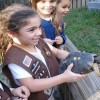 Wildlife Sanctuary & Exotic Animal Tour
