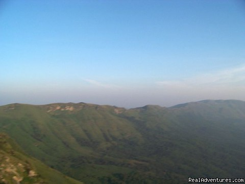 Wondering about view? - Jungle camping Devigiri Coffee Estate Chikmagalur