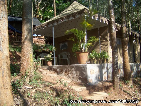 - Jungle camping Devigiri Coffee Estate Chikmagalur