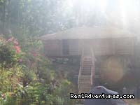 Tree Cottage and Camping in Chikmagalur - Jungle camping Devigiri Coffee Estate Chikmagalur
