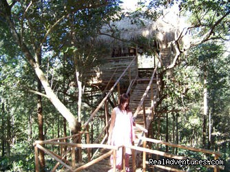 Tree Hut/Tree House in Jungle Chikmagalur (#4 of 25) - Jungle camping Devigiri Coffee Estate Chikmagalur