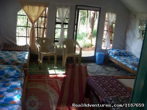 inside Jungle cottage Devigiri homestay Chikmagalur - Jungle camping Devigiri Coffee Estate Chikmagalur