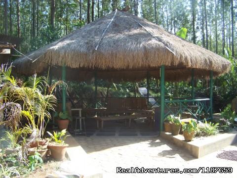 Camp Fire , Jungle Camping at Devigiri Homestay  (#13 of 25) - Jungle camping Devigiri Coffee Estate Chikmagalur