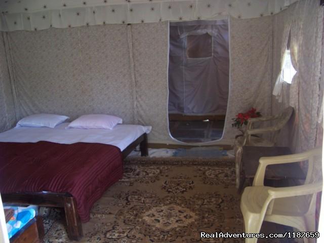 inside Rajasthani Tent Devigiri homestay Chikmagalur - Jungle camping Devigiri Coffee Estate Chikmagalur