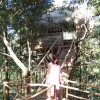 Tree Hut/Tree House in Jungle Chikmagalur