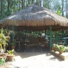 Camp Fire , Jungle Camping at Devigiri Homestay
