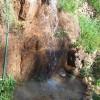 Jungle camping Devigiri Coffee Estate Chikmagalur