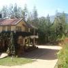 Devigiri Estate Homestay Bungalow Chikagalur