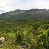 Hill View from Devigiri estate trekking chikmagalur