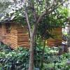 Bamoo Cottage Devigiri estate Homestay chikmagalur