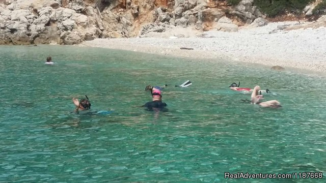 Jamie's Marine Adventure - Educational and fun snorkelling day trips