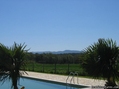 Swimming Pool (#4 of 5) - Luxury Vacation Rental in Girona near Barcelona