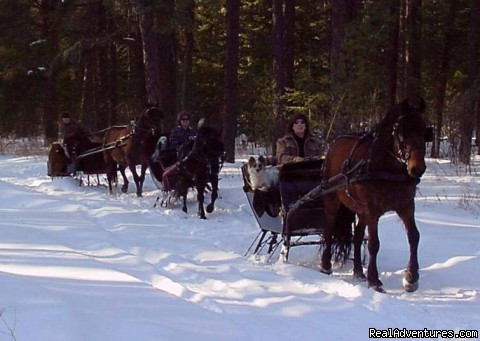 Sleigh Ride Adventures In The North Woods
