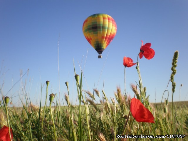 Spring flight - Hot-air Balloon Rides in Madrid & Segovia, Spain