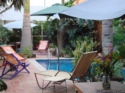 The pool area between palm trees - Hotel Boutique Casa Tlaquepaque a Wonderful Gem.
