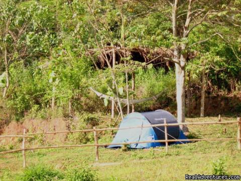 Wilderness Getaways at Civet Creek Camp - Coorg Photo #3