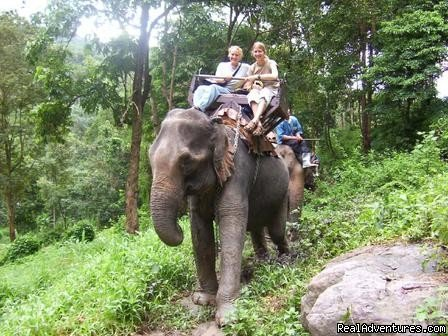 Tara and Brian in Jungle safari | Image #3/4 | Volunteer Plus Adventure in Nepal