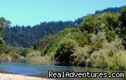 Summerland Cabin Russian River Wine Country, California Vacation Rentals