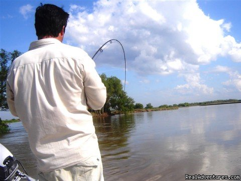 Fishing Golden Dorados in Buenos Aires | Image #13/13 | Argentina Fishing Expeditions